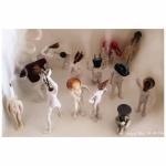 photo des figurines réalisées avec des objets de récupération.