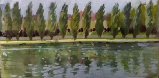Les peupliers du parc de Sceaux